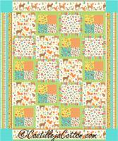 Framed Four Patch Quilt Pattern CJC-5033